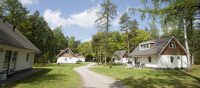 780x345-crop-rcn-grote-bos-accomodatie-bungalow-3
